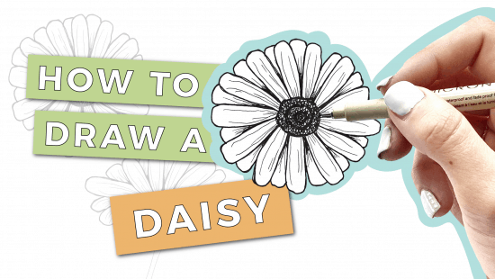 How to Draw a Daisy: Step-by-Step Tutorial