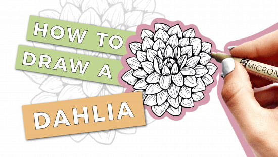 How to Draw a Dahlia: Step-by-Step Tutorial