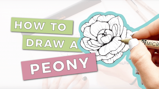 How to Draw a Peony: Step-by-Step Tutorial
