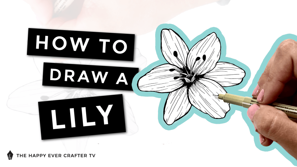 How to Draw a Lily Photo